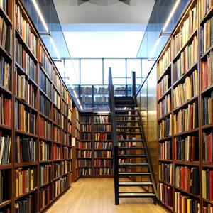 Библиотеки Парфино